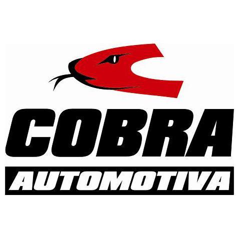 Cobra Automotiva
