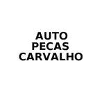 AUTO PECAS CARVALHO