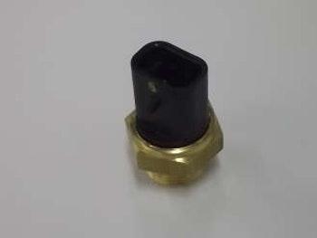 Interruptor Térmico do Radiador - Delphi - WC10067 - Unitário