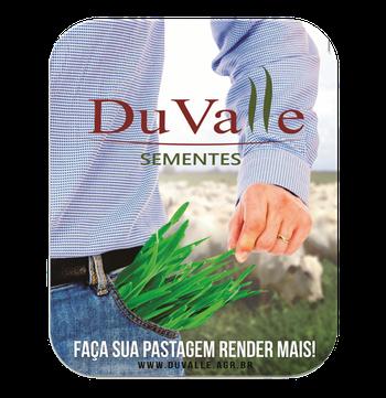 SEMENTE CAPIM MOMBAÇA INCRUSTADA REVESTIDA - 10KG - DuValle Sementes - 401110 - Unitário
