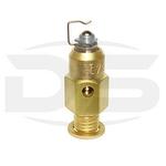 Válvula de Agulha - DS Tecnologia Automotiva - 1018 - Unitário