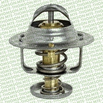 Válvula Termostática - Série Ouro CRV 2007 - MTE-THOMSON - VT253.77 - Unitário