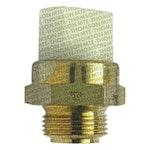 Interruptor Térmico do Radiador - MTE-THOMSON - 717.87/92 - Unitário