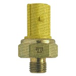 Interruptor Térmico - MTE-THOMSON - 735 - Unitário