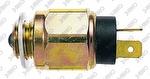 Interruptor de Luz de Ré - 3-RHO - 4480 - Unitário