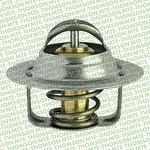 Válvula Termostática - Série Ouro LAGUNA 1999 - MTE-THOMSON - VT248.88 - Unitário