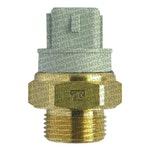 Interruptor Térmico do Radiador - MTE-THOMSON - 829.100/110 - Unitário