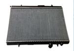 Radiador de Água - Delphi - RA20214 - Unitário