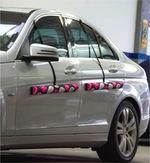 Protetor de Porta Magnético para Carro - Proteporta Fashion - Pink e Preto - Proteporta - PP2-Q2-PK - Par