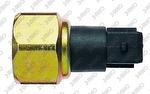 Interruptor Pneumático - 3-RHO - 5588 - Unitário