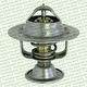 Miniatura imagem do produto Válvula Termostática - MTE-THOMSON - 208.82 - Unitário