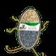 Miniatura imagem do produto SEMENTE CAPIM MIYAGUI INCRUSTADA REVESTIDA - 10KG - DuValle Sementes - 451110 - Unitário
